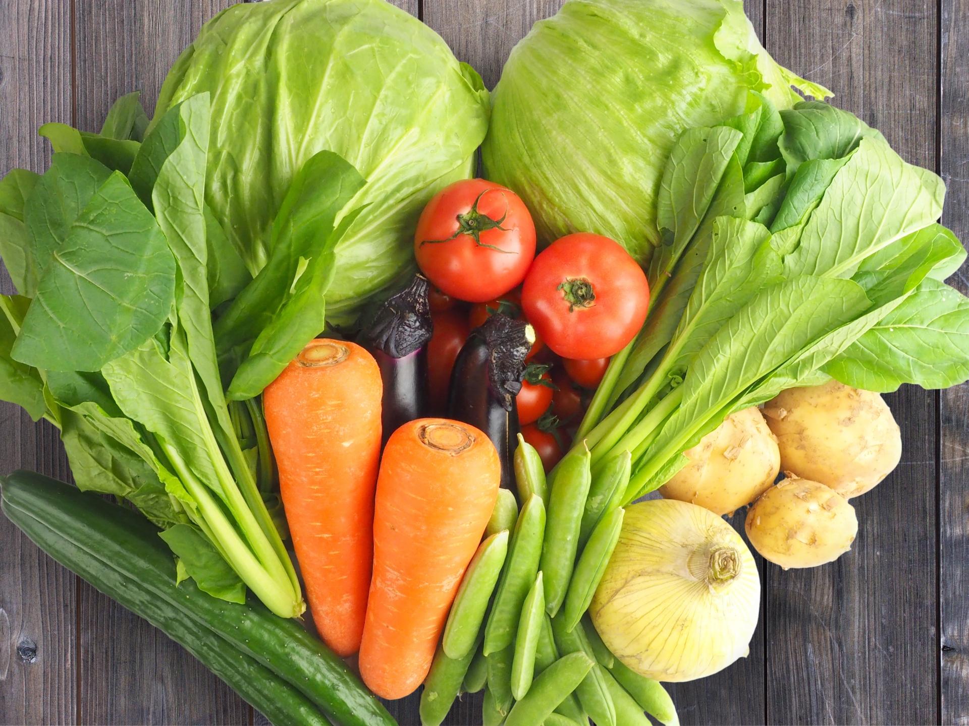 いろんな新鮮な野菜